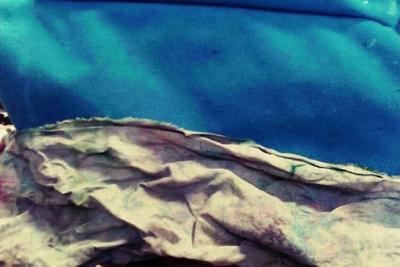 paysage16