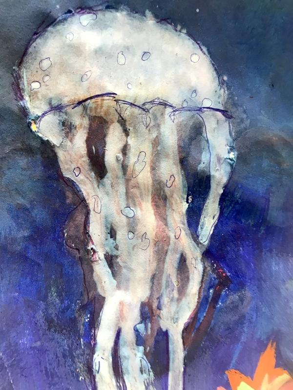 meduse1