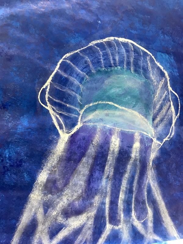 meduse5